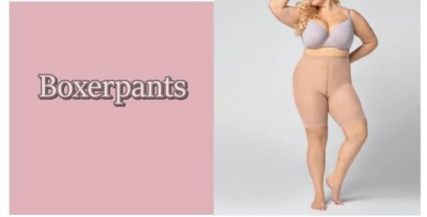 boxerpanty